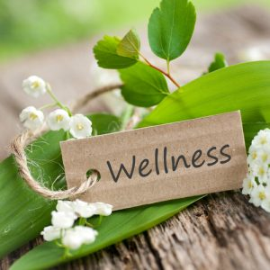 Nature - Wellness card and plants