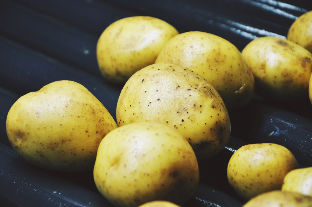 Improving Your Metabolism with Resistant Starch